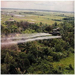 Helicopter spraying   jungle foliage with herbicides