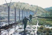 Two soldiers walking along the defoliated Korean demilitarized zone