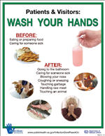 Wash 9 - Wash Your Hands 4