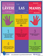 Hands 8SP - Lávese Las Manos