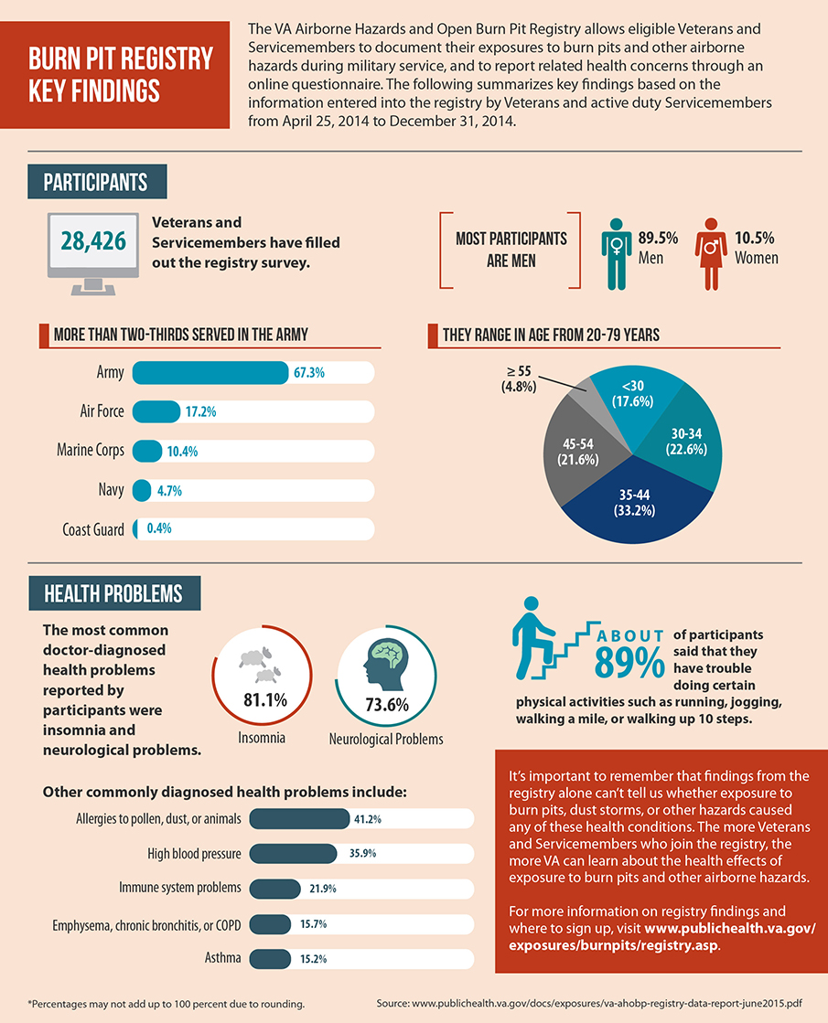 Burn Pit Registry Key Findings Infographic
